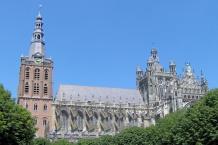 Kathedrale von 's-Hertogenbosch