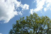 Himmel, Natur